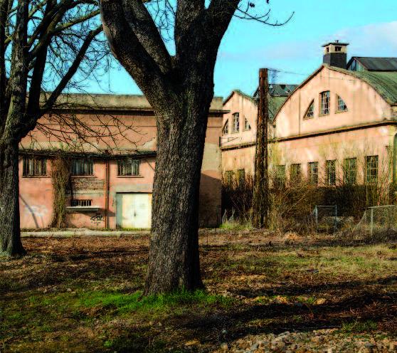 Schwetzingen abseits der Residenz, Foto © Annette Schrimpf